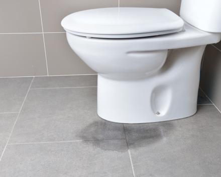 Vervangen sanitair